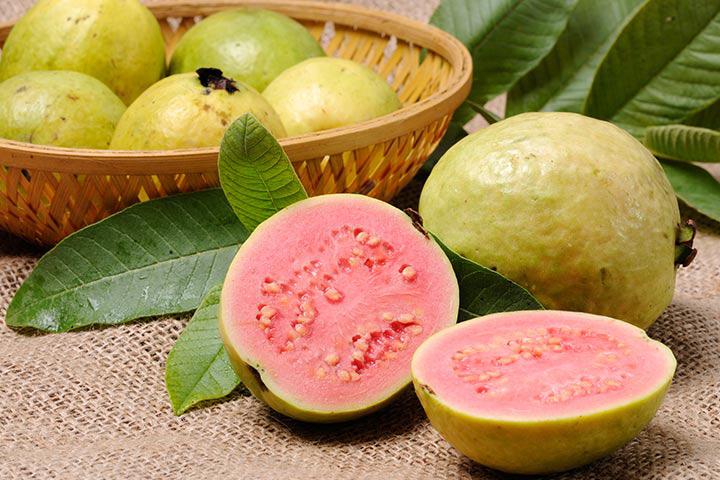 guava_thumnail
