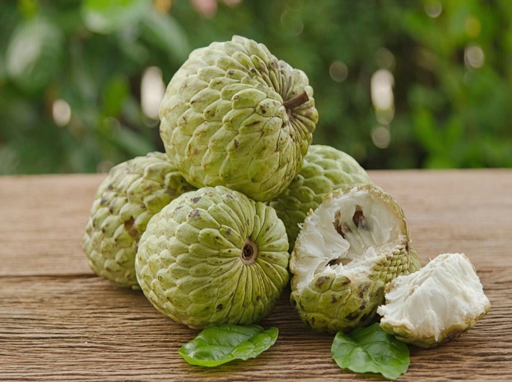 custard_apple_thumnail